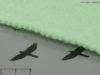 Polynetex_Green_300_b