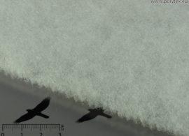 FLEXOTERM 100 g/m2