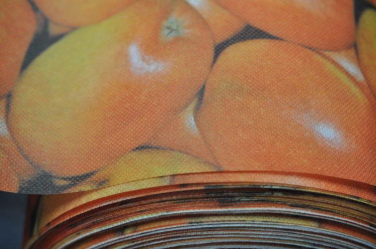 Novolin 100 g/m2, potisk jablka