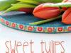 tulipányo
